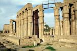 Temple of Luxor, Buildings, Monuments, Landmarks, CJEV01P11_12
