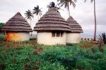 Hut, Building, Thatched Roof House, Home, Grass Roofs, roundhouse, palm trees, Maputo, Sod, CKMV01P02_12
