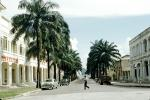 Tree Lined Street, buildings, 1950s, CKXV01P01_09