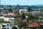 cityscape, buildings, homes, trees, Harare, CKZV01P02_08.1041