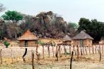 Thatched Roof Houses, Homes, Grass Roof, buildings, roundhouse, desert, building, Sod, CKZV01P02_18