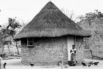 Thatched Roof Houses, Homes, Grass Roof, roundhouse, desert, buildings, building, Sod, CKZV01P05_01B