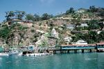 Homes, Houses, bluffs, buildings, docks, pier, boats, Avalon, Harbor