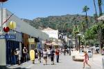 Shops, Buildings, Palm Trees, Avalon, landmark