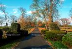 Pathway, Driveway, manicured bushes, trees, autumn, Lexington, home, house, residence, building, CLKV01P04_18.1728