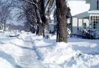 Snow, Ice, Cold, Sidewalk, Bare Trees, Winter, Street