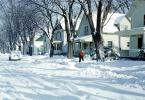 Road, Street, Bare Trees, Homes, Houses, Snow, Ice, Cold, Winter