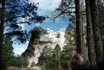 Mount Rushmore through the forest, trees
