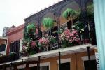 Balcony, Flowers, French Quarter, CMLV01P09_08