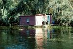 House on the Bayou, swamp, floating home, building, wetlands, CMLV01P15_16