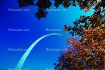 The Gateway Arch, Trees