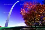 The Gateway Arch, tree, autumn, CMMV01P15_18