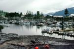 Wrangell Boat Harbor, Piers and Docks, CNAV02P04_14