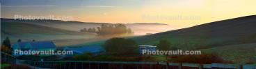 Early Morning Fog in the Valley, Two-Rock, Sonoma County, Panorama, CNCD01_212