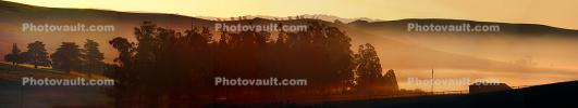 Early Morning Fog in the Valley, Two-Rock, Sonoma County, Panorama, CNCD01_215