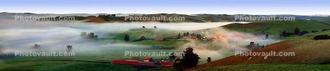 Trees, Buildings, Fog, Morning, Two-Rock, Sonoma County, Panorama, CNCD02_005