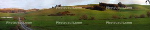 Road, Fields, Two-Rock, Hills, Sunset, Panorama, CNCD02_022