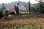 St. Clement Vineyards, St. Helena, CNCV01P09_09