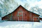 snow, tree, Ice, Cold, Frozen, Icy, Winter, red barn, Mariposa County, CNCV02P13_01