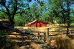 Barn, Fence, Gate, Trees, summer, hot day, sunny, dry, outdoors, outside, exterior, rural, building, CNCV03P10_13.1732