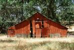 Barn, Trees, Building, CNCV03P10_16