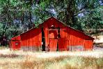 Barn, Trees, Building, CNCV03P10_16B