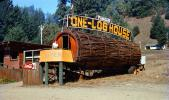 One-Log House, Tourist Trap, Roadside America, 1950s, CNCV03P11_04
