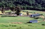 Barns, Ranch Compound, Buildings, The Lost Coast, Humboldt County, CNCV04P01_10