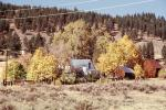 autumn, house, fall colors, Trees, Vegetation, Flora, Plants, Colorful, barn, CNCV04P06_18