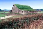 Barn Building, rural, sod roof, grass, CNCV05P14_17