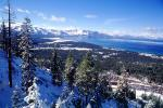 Forest, snow, trees, mountains, South Lake Tahoe, CNCV07P06_03