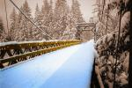 Snow, Cold, Ice, Cool, Frozen, Icy, Winter, Bucolic, Rural, peaceful, Old Wooden Bridge, Nisqually River wooden Suspension Bridge, Longmire village, Mount Rainier National Park, Equanimity