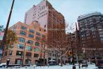 Buildings, Bare Tree, Snow, Cold, Midtown Manhattan, winter, wintertime, 155 Avenue of the Americas, CNYV02P15_09.1734