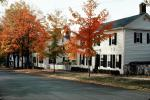 Cooperstown, Home, House, Trees, Fall Colors, autumn, CNZV01P04_19