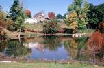 Fall Colors, Autumn, Trees, Vegetation, Flora, Plants, Colorful, Lake, Reflection, CNZV01P05_14