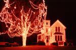 Decorated Home, Trees, Lights, Nighttime, Plaistow, New Hampshire, COEV01P13_14