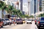 Cars, Palm trees, buildings, Automobile, Vehicle, COFV02P15_14