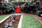 Pond, garden, statue, Poinsettia Dress, Flamingo statue, Ft. Meyers, COFV03P04_12