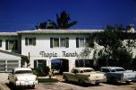 Parked Cars, Tropic Ranch Motel, Building, Florida, Automobile, Vehicle, 1950's