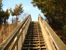 Stairs, Steps, Staircase, Henlopen State Park