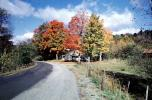 fall colors, Autumn, Trees, Vegetation, Flora, Road, Home, House, Fence