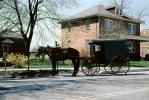 Amish Horse and Buggy, Amish country, COPV02P09_05