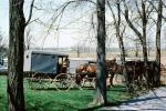Amish Horse and Buggy, Amish country, COPV02P09_09