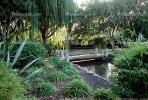 Gardens, Footbridge, Path, Shrub, Sunnyvale, Silicon Valley