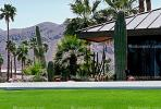 Home, house, cactus garden, lawn, roof, Palm Springs, CSCV01P14_11