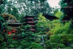 Pagoda, Japanese Tea Garden, October 25 1982, CSFV02P12_02