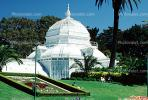 Conservatory Of Flowers, CSFV09P13_09B