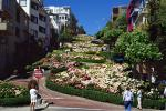 Hortensia Flowers, Hydrangea, Hairpin Turns, Switchback, S-curve, curviest, homes, houses, buildings, CSFV11P13_03