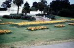 early 1950's, Conservatory Of Flowers, 1950's