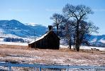 Barn, tree, fields, cold, ice, snow, mountains, CSOV01P07_16